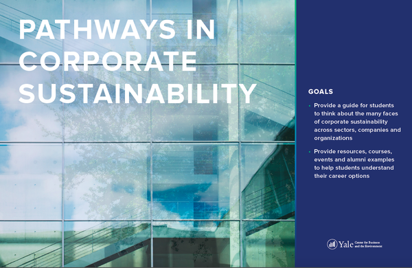 Pathways in corporate Sustainability cover