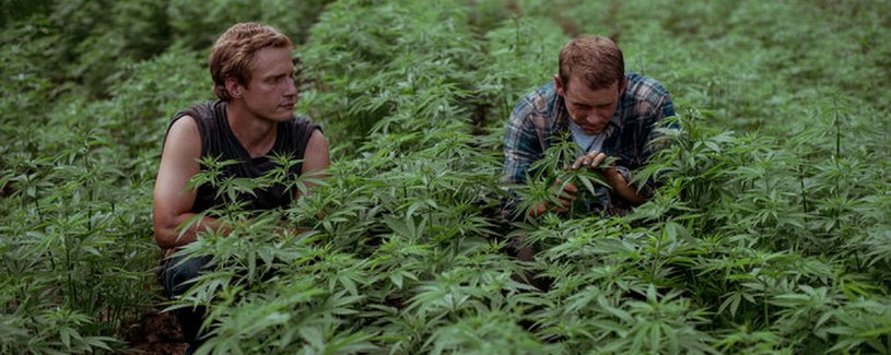 Sobotka Stories: Appalachian Roots – Hemp 2.0