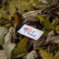 i voted sticker in leaves