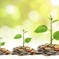 A Good Socially Responsible Investment (SRI) Fund is Hard to Find