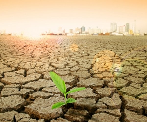 Santam: Crop Insurance and Climate Change